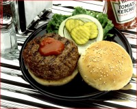 http://www.allenlieberman.com/files/gimgs/th-10_HAMBURGER-web.jpg