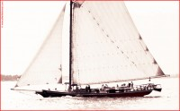 http://www.allenlieberman.com/files/gimgs/th-16_OLD-GAFF-RIGGED-SLOOP.jpg