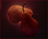 http://www.allenlieberman.com/files/gimgs/th-16_dark-pears-web_v4.jpg