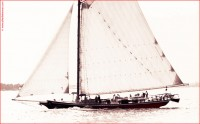 http://www.allenlieberman.com/files/gimgs/th-6_OLD-GAFF-RIGGED-SLOOP_v2.jpg