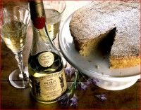 http://www.allenlieberman.com/files/gimgs/th-6_cheese-cake,-picolit-wine-w_v3.jpg
